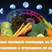 Лунный календарь огородника-садовода на январь 2020 года