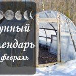 Лунный календарь огородника-садовода на февраль 2020 года
