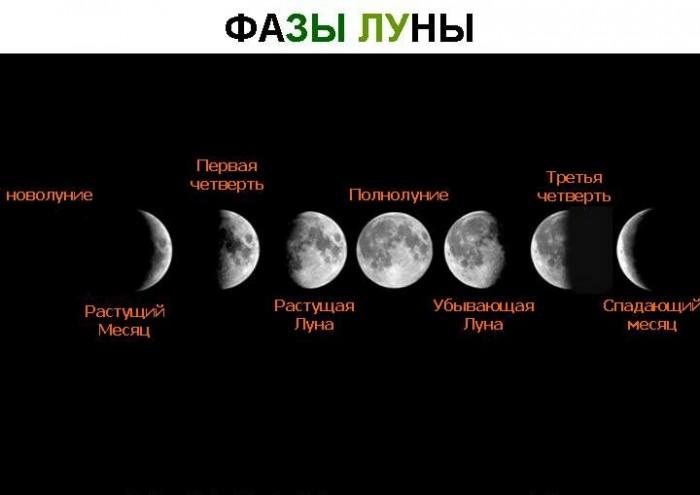 Лунный календарь стрижек на май 2020 года: самые благоприятные дни
