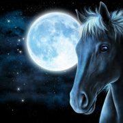 Гороскоп Лошадь июнь 2020